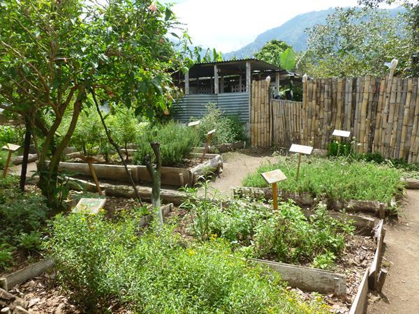 m_Guatemala Antigua Atitlan 177